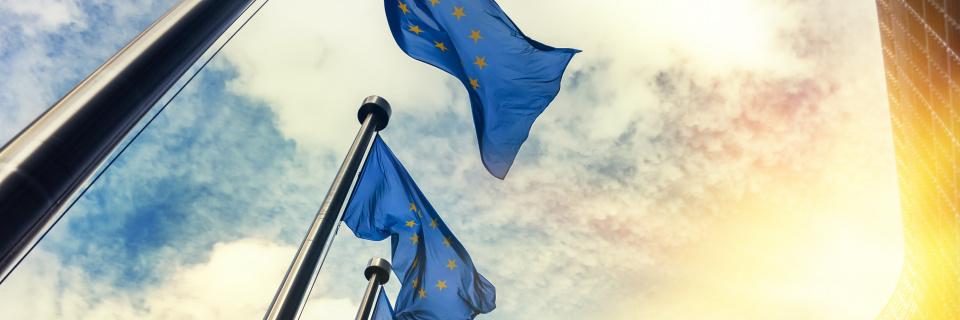 Groupe Socialiste du Parlement de Wallonie - Le Parlement de Wallonie appelle l'Union européenne à se doter de nouvelles ressources pour financer la transition sociale, écologique et économique