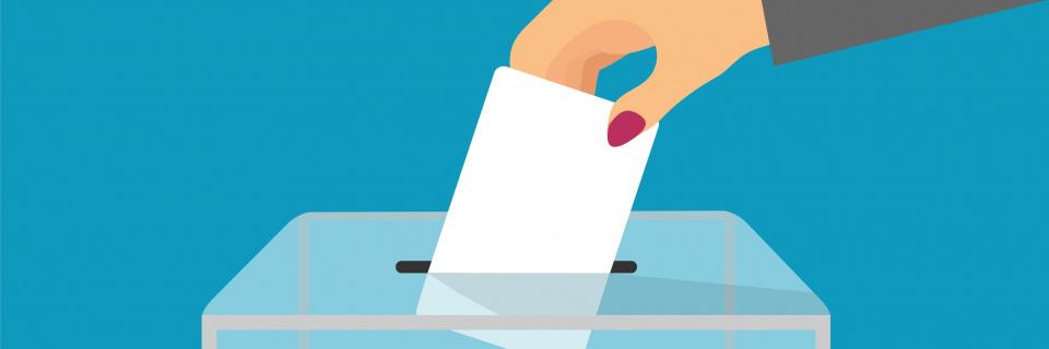 Groupe Socialiste du Parlement de Wallonie - Le combat du POB pour le suffrage universel