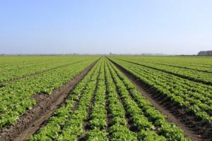 Groupe Socialiste du Parlement de Wallonie - Vidéo - Crowdfunding agricole